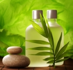 consumer-demand-sees-strong-growth-for-natural-cosmetics-in-the-middle-east
